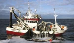 MS Årøyfisk